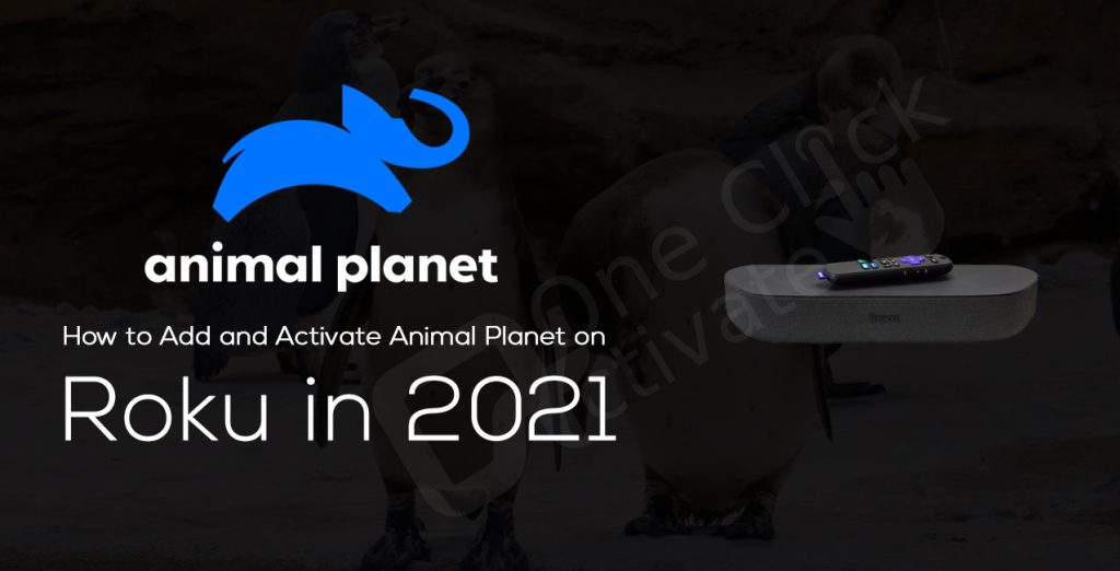 How to Add and Activate Animal Planet on Roku